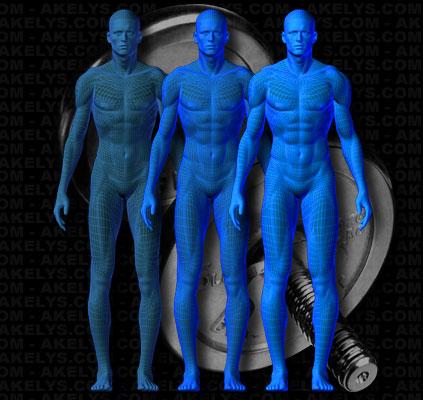 Programme de musculation information sur la phase prise de masse - Programme alimentaire prise de masse musculaire ...